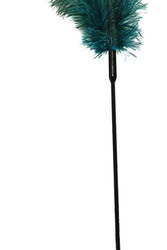 02206200000 nor a 334x500 - Ostrich Feather turqouise